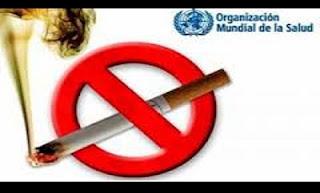 A Organização Mundial da Saúde, OMS, afirmou que o consumo de produtos derivados do tabaco caiu em todo o mundo e consequentemente houve um aumento do número de não fumantes. Segundo o último relatório da OMS sobre a Epidemia Global do Tabaco de 2015, apresentado, esta terça-feira, em Manila, apenas 33 países no mundo fixaram impostos de 75% sobre o preço do maço de cigarros, uma medida recomendada pela organização.