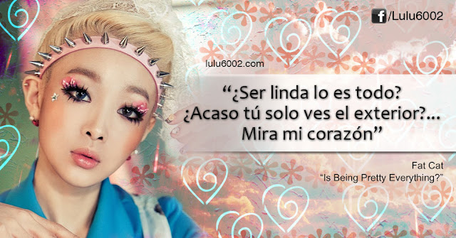 fat cat frases kpop