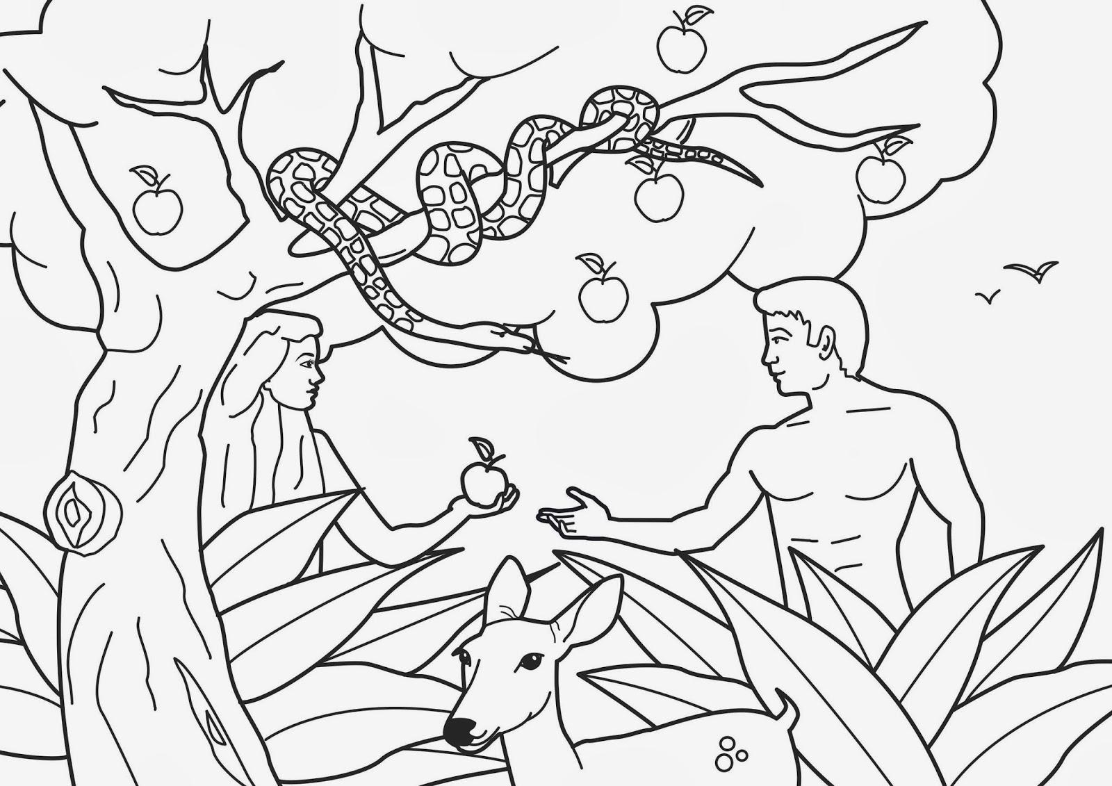 Imagenes Cristianas Para Colorear: Dibujos Para Colorear De Adan y Eva