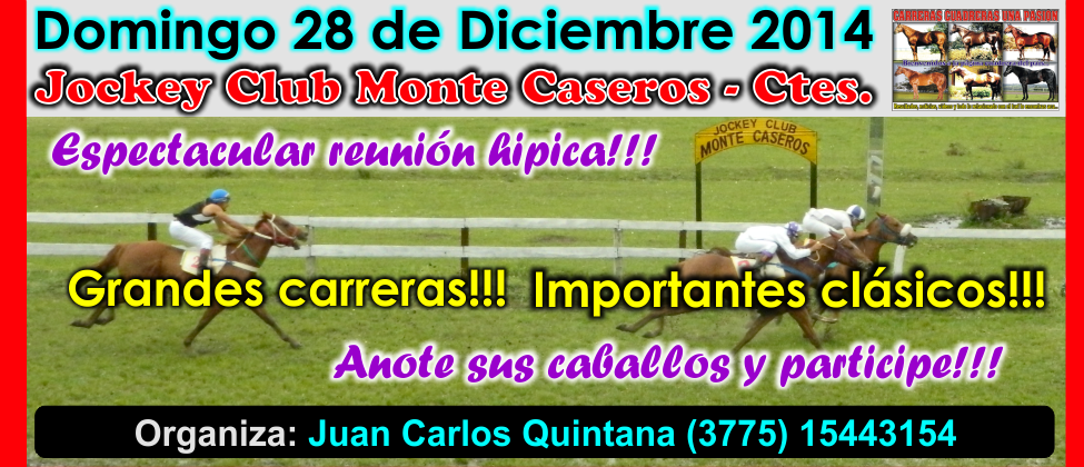 MONTE CASEROS - 28.12.2014