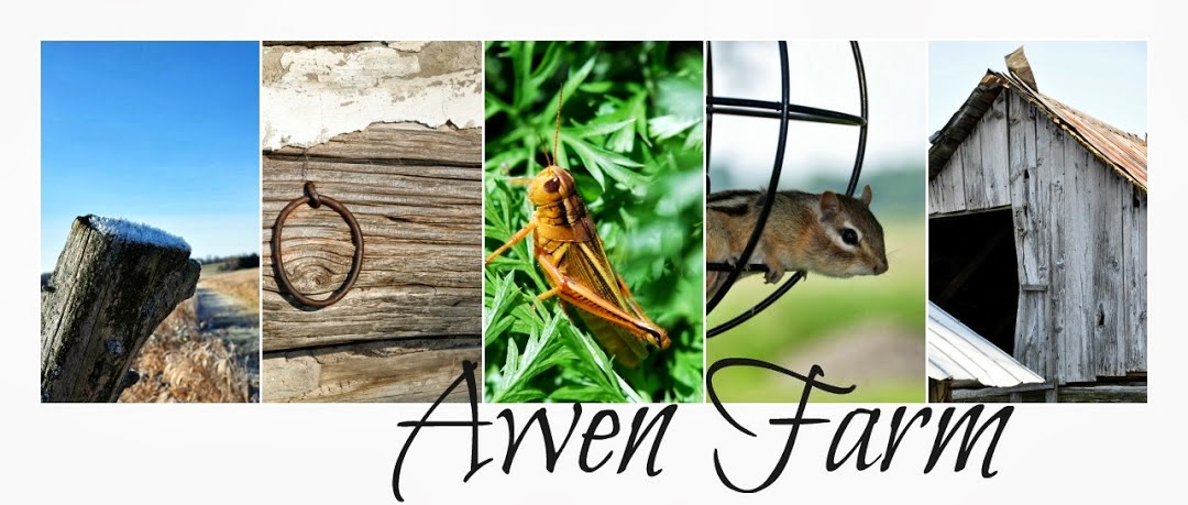 Awen Farm