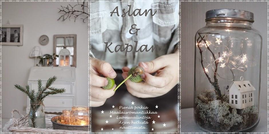 Aslan&Kaplan