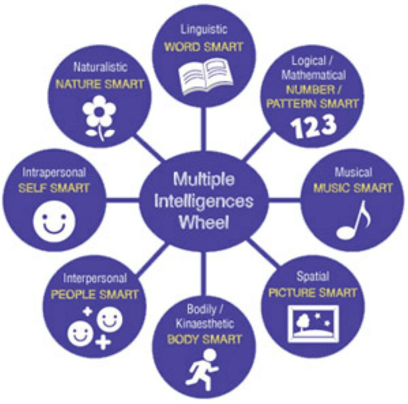 multiple intelligences modern education essay