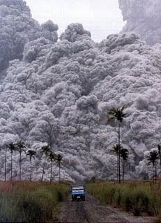 toxic gases wedus trash