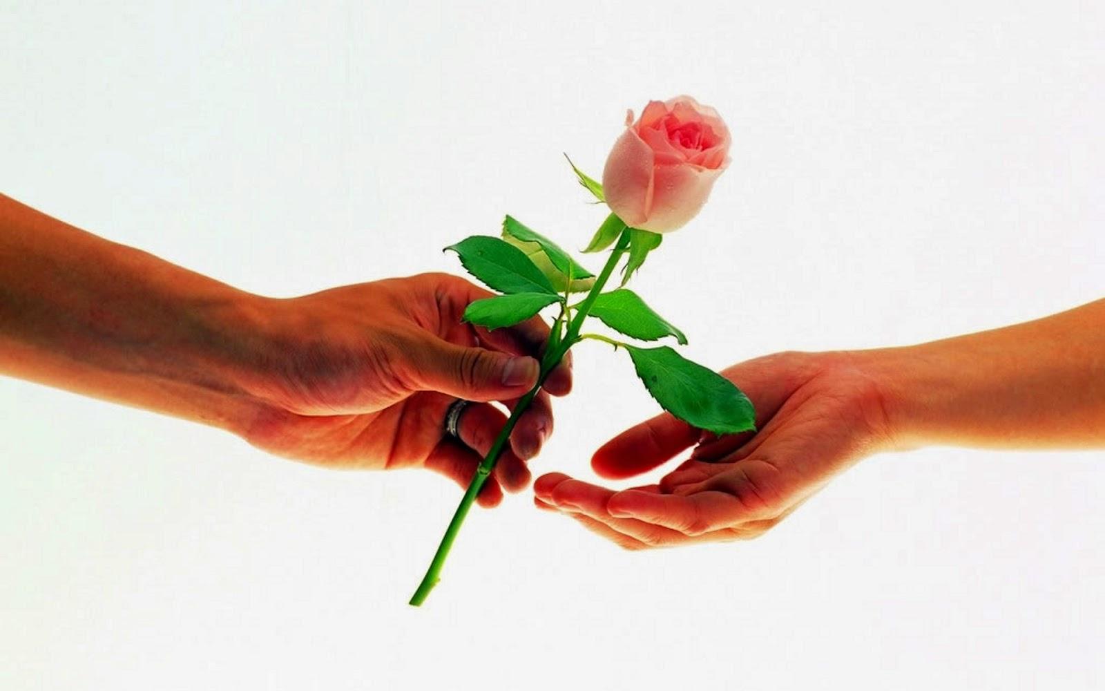 Imagenes De Rosas Para Enamorados - Frases y pensamientos de amor con imagenes bonitas de
