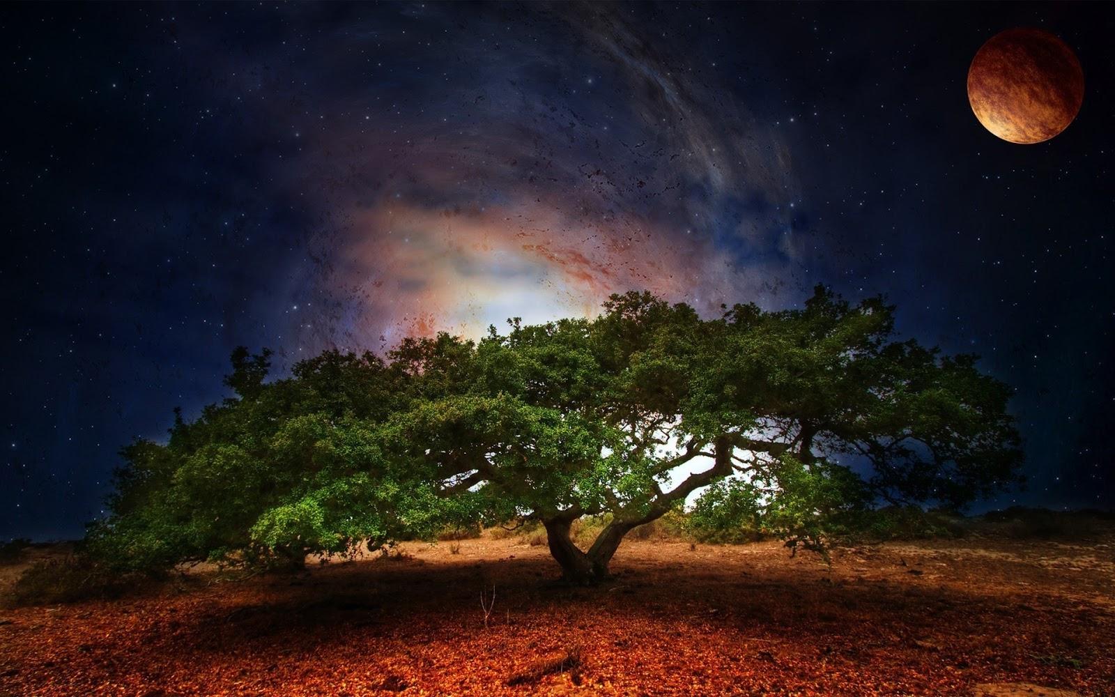 Motto: země je zázrak. život zůstává tajemstvím. ve velkém