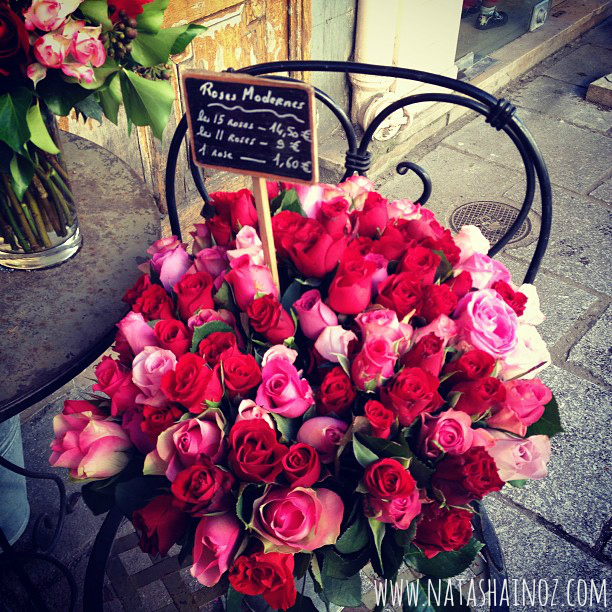 #TuesdayTune, Blessed, Martina McBride, Music, Quote, Tuesday Tune, Tuesday Tune Linky Party,  Words of Wisdom, Roses in Paris