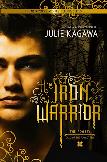 https://www.goodreads.com/book/show/18054085-the-iron-warrior