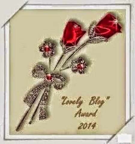 Lovely blog award 2014