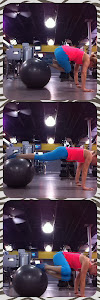 Oblique Stability Ball Tucks