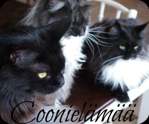 Coonielämää