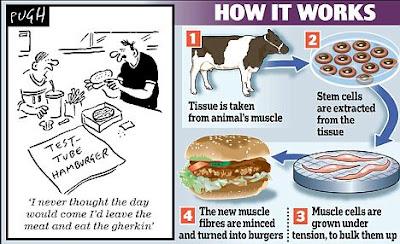 Burger dari sel stem