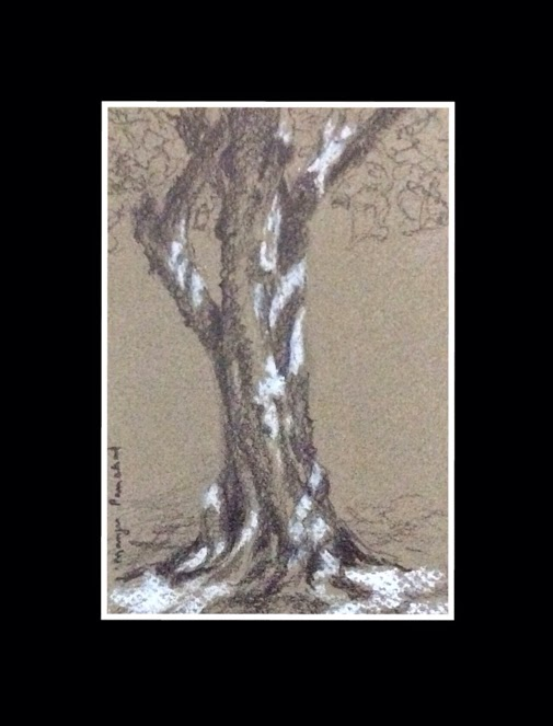 Graphite and white pastel sketching of a tree by Manju Panchal