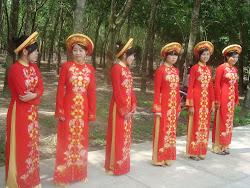 Vietnamese dress Ao Dai (Áo Dài)