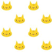 yellow cat kitty