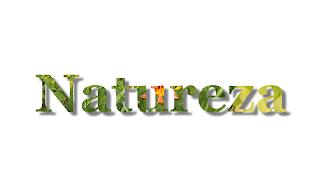 Titulo Natureza com sombra 1920x1080 fundo branco