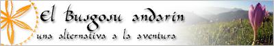 Descubre el encanto de la orografía asturiana y la magia que se respira en sus bosques