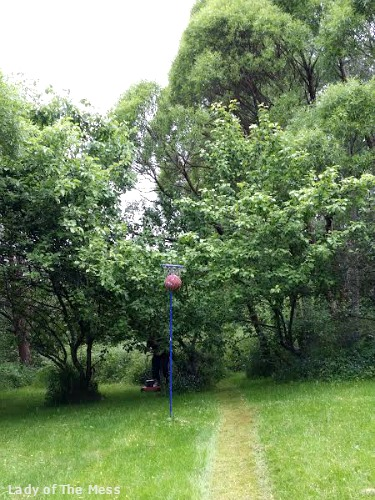 landscape, maisema, nurmikko, grass