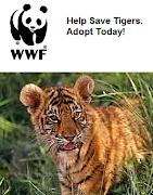 Lelucon Sokong WWF