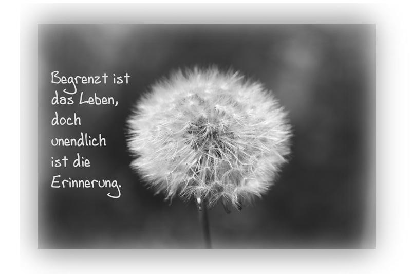 ... Stampin With Fanny: MtS #102: Frohe Weihnachten Mit Sternchen Und  Dankesschreiben Danke Sagen Weisheiten Zitate Kurze Weisheit