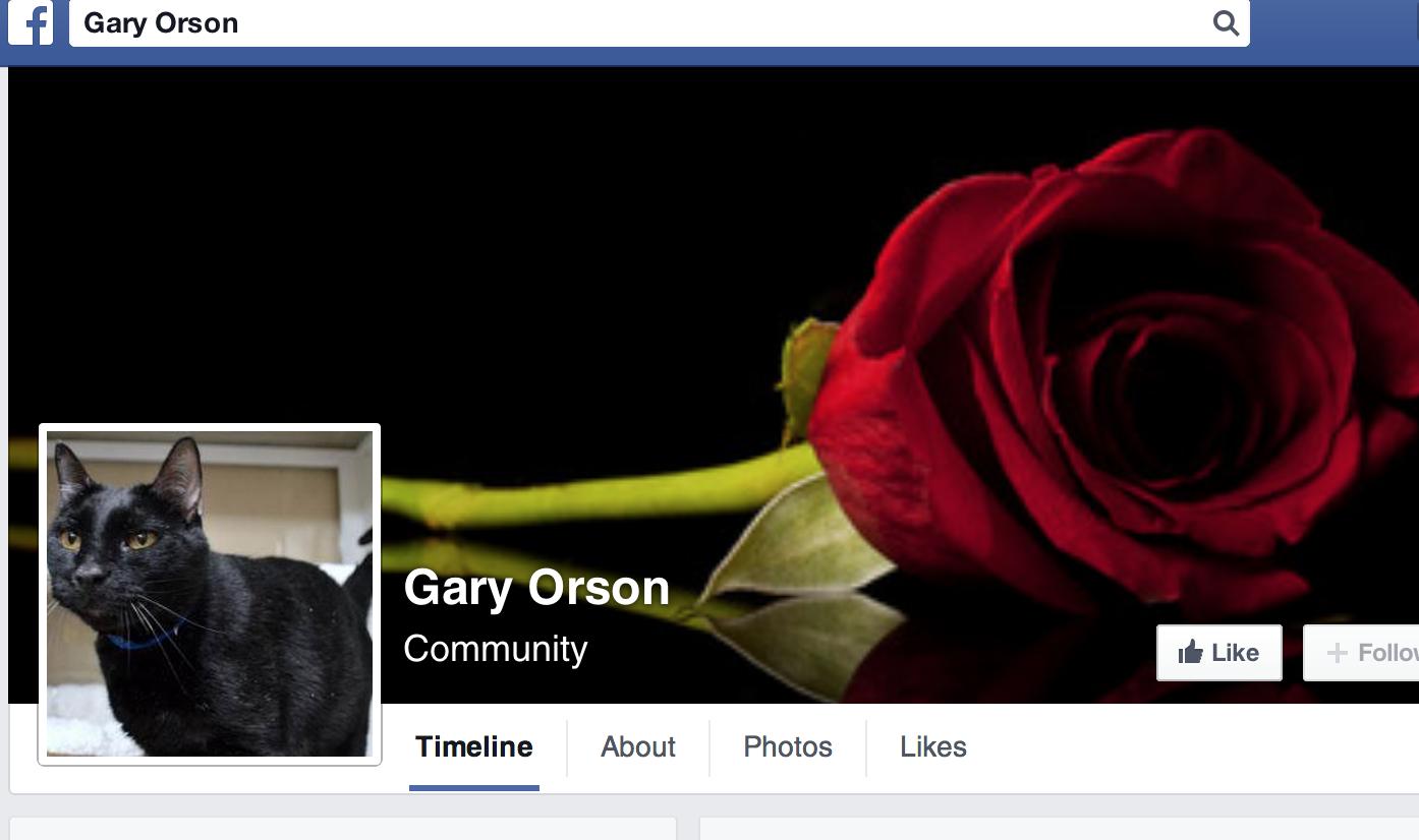 www.facebook.com/GaryOrsonLovableFeline