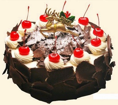 Harga Kue Tart Hollan Bakery,