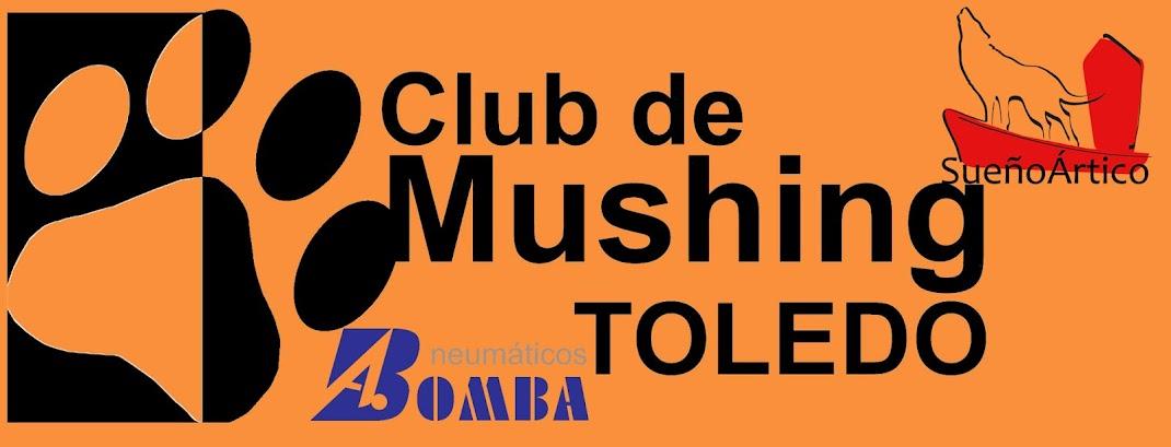 Mushing Toledo