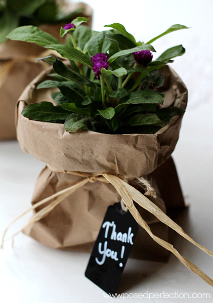Need a small gift for someone? Try wrapping a simple garden flower in a brown bag tied off with raffia. Frugal and sweet!