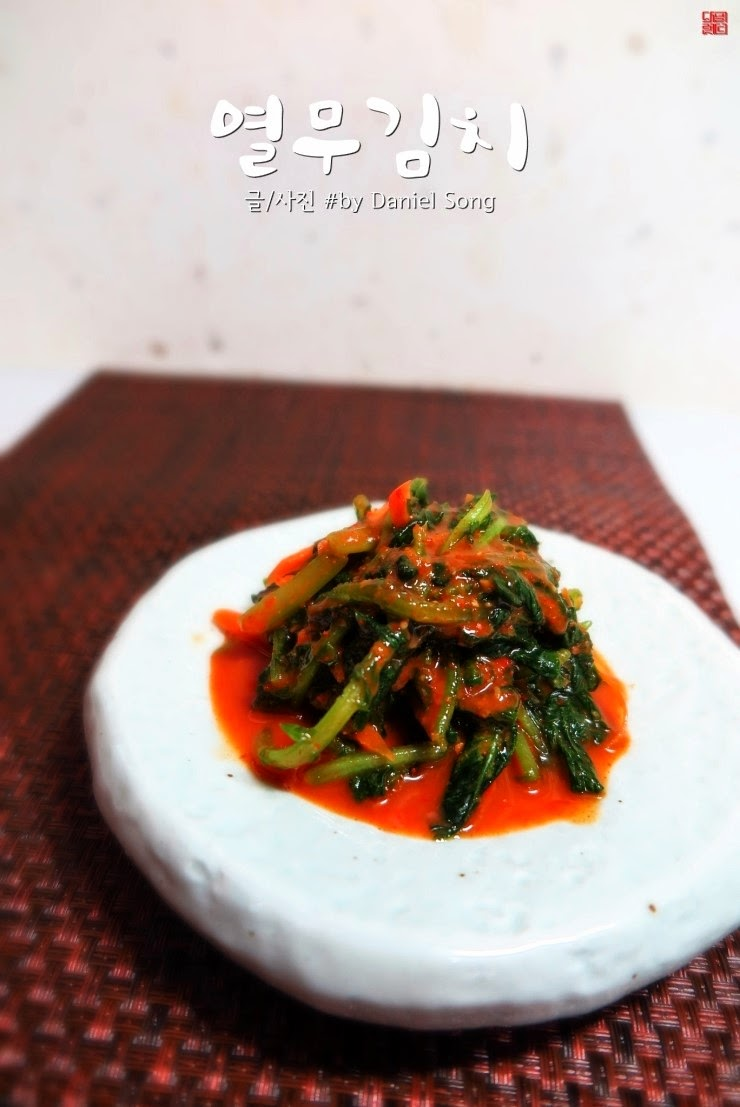 Korean recipes blog danielland korean food recipehow to make korean food recipehow to make kimchi young radish leaves recipe forumfinder Choice Image