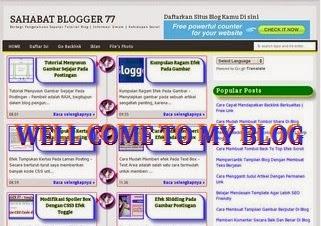 my web image