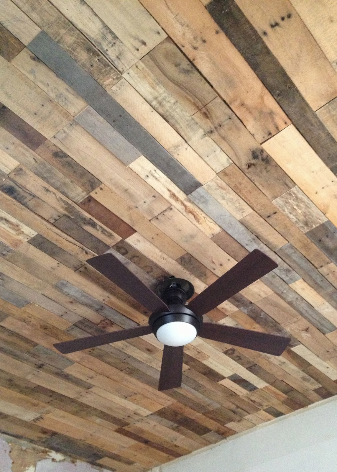 St louis folk victorian ceiling renovation for Ceiling pictures