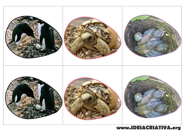 Jogo da Memória e Pareamento Figura Letra e Figura Palavra - Ovíparos Animais que nascem de ovos