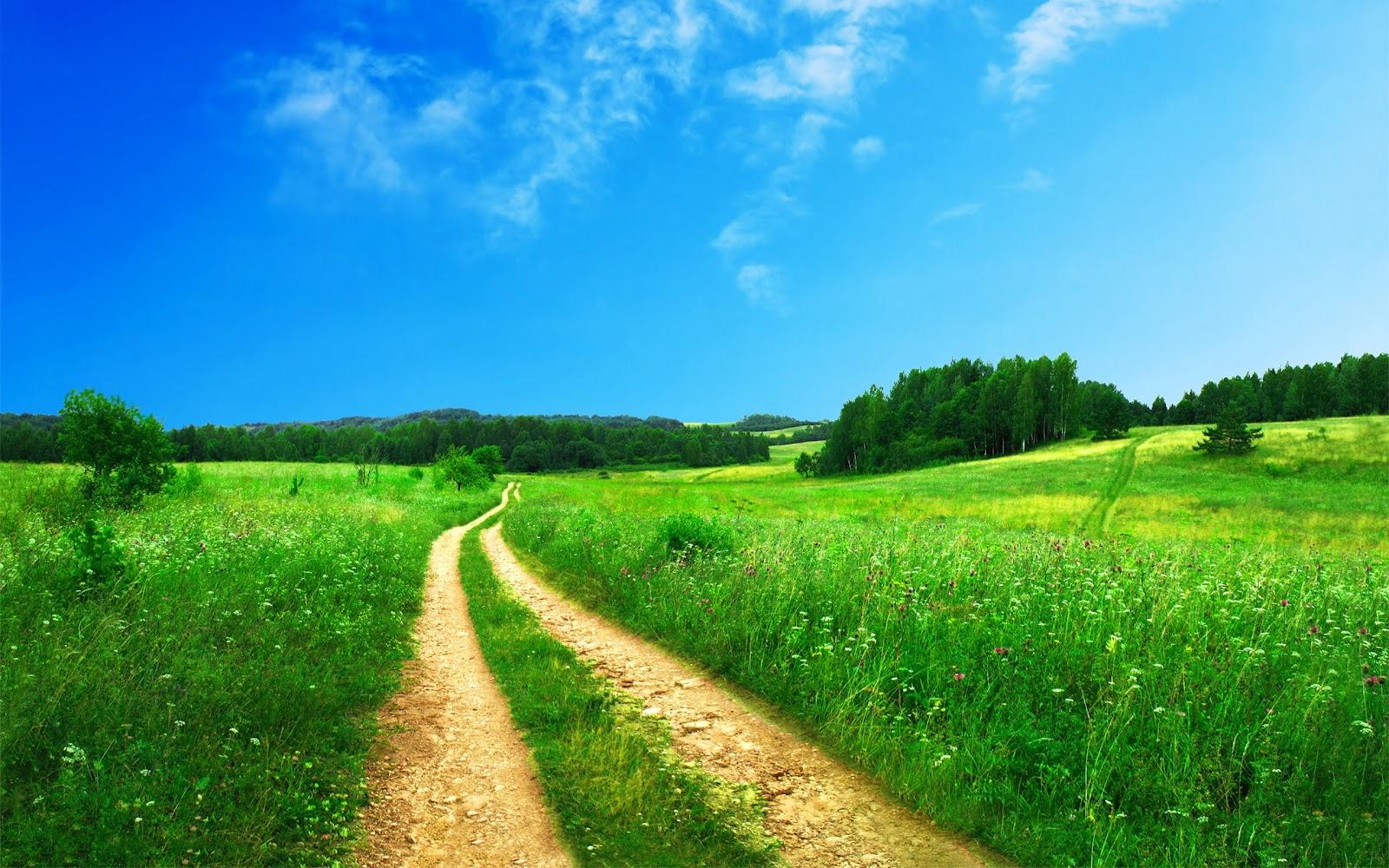 http://4.bp.blogspot.com/-lwsEheLyRIc/T4mpn3QkV7I/AAAAAAAAABA/9qKguHiUHKI/s1600/new-hd-natur-roads-nature-walpaper-laptop-desktop.jpg