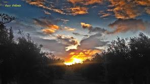 El sol al amanecer.