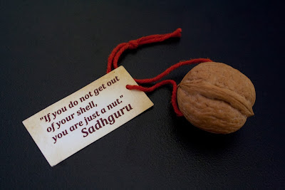 If you do not get out of your shell, you are just a nut. - Sadhguru