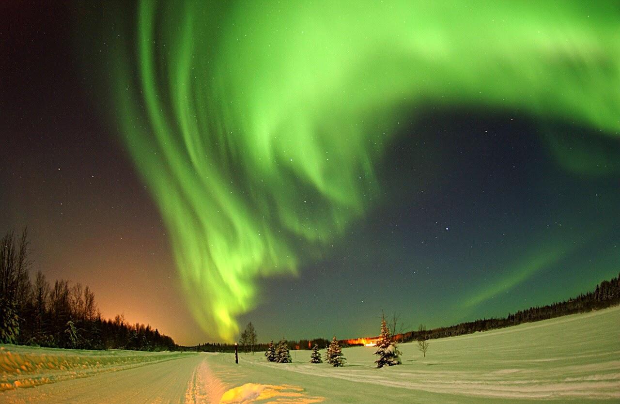 アラスカ、オーロラ、冬、雪、観光
