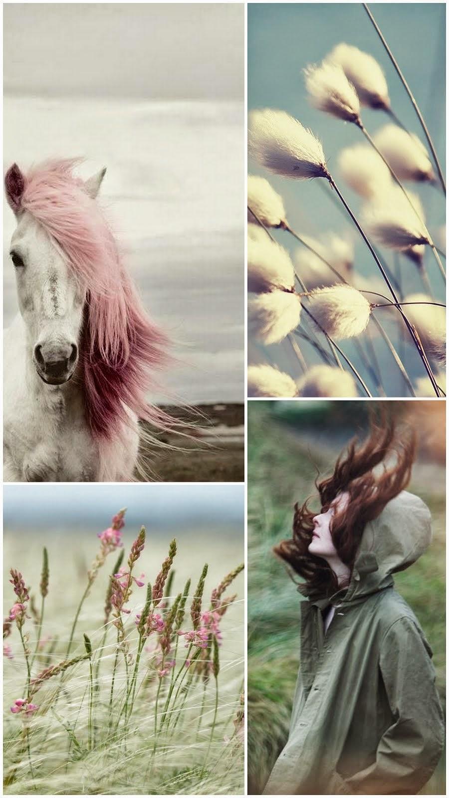 Marzo ventoso ☁