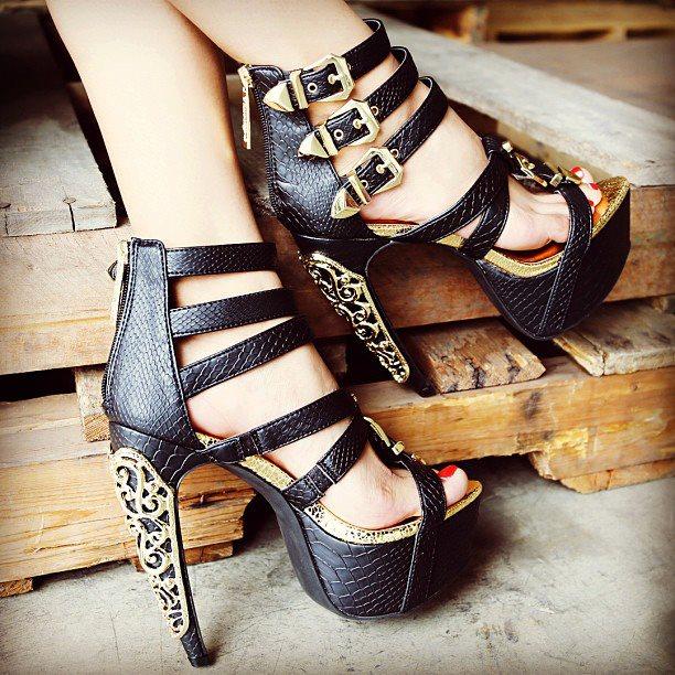 Coleccion de zapatos elegantes para mujeres