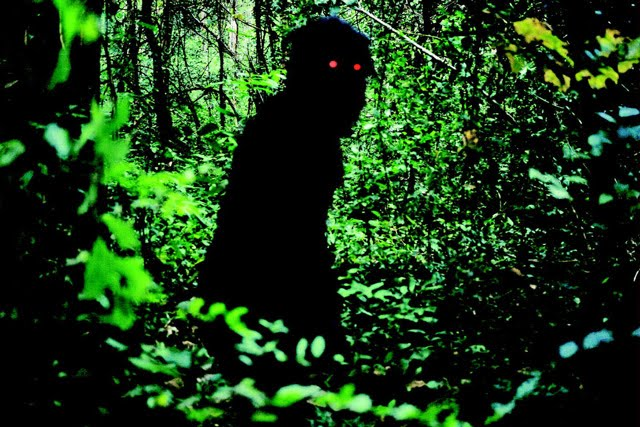 Uncle Boonmee who Could Recall his Past Lives, Photograph