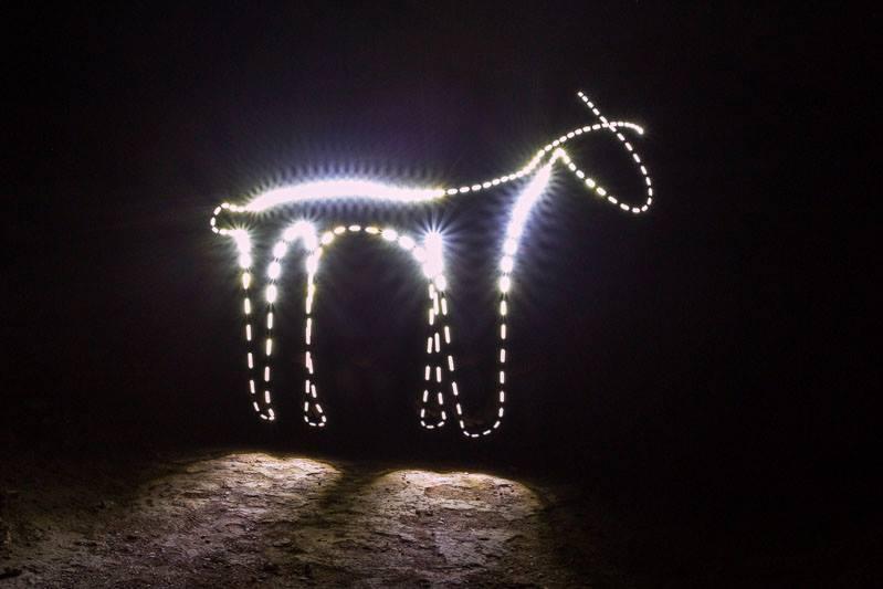 """Lightpainting, Lichtmalerei """"Lama"""""""