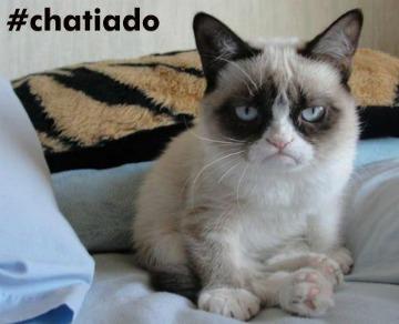 Botafogo tem recaída de Botafogo e acha 4 rolas do Malafaia em Macaé