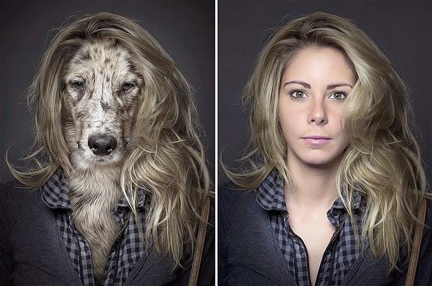 perros y propietarios