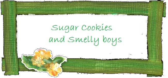 Sugar cookies and Smelly boys