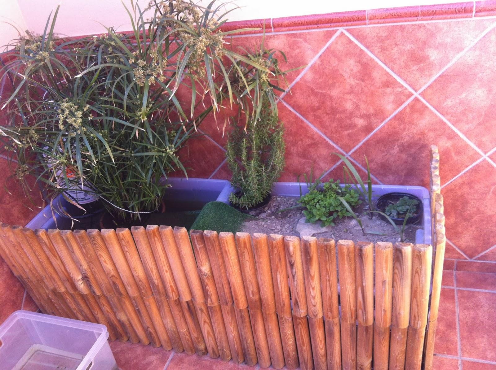 Vida tortuguera estanque prefabricado para acu ticas for Precio estanques prefabricados