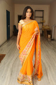 Midhuna New photo session in Saree-thumbnail-9