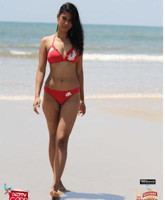 Kingfisher Calendar 2013 Bikini Photos