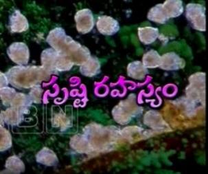 """Dark Secret on """"Srusti Rahasyam"""" – 22nd Feb"""
