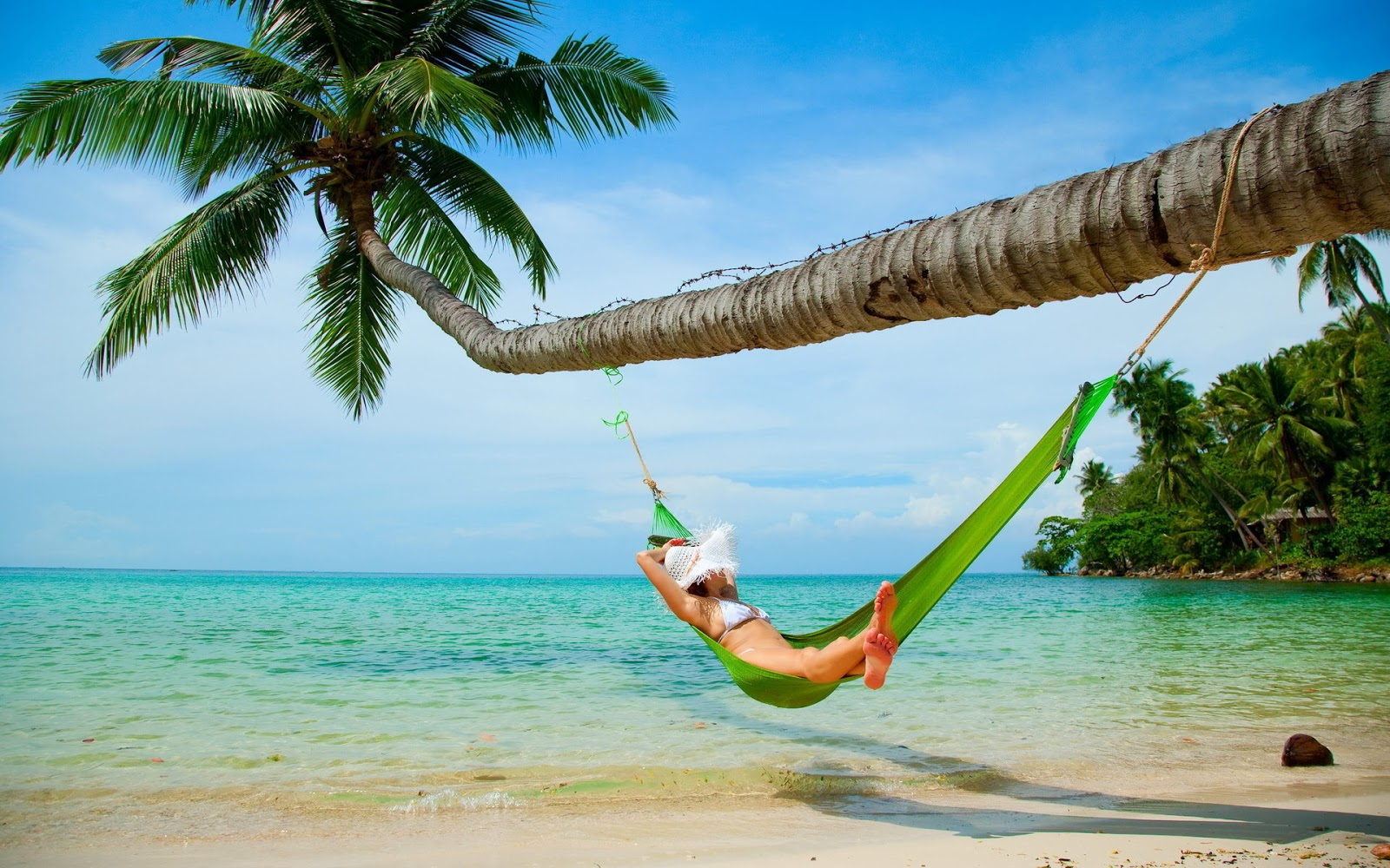 Woman Relaxing In Hammock Wallpapers 500 Collection Hd