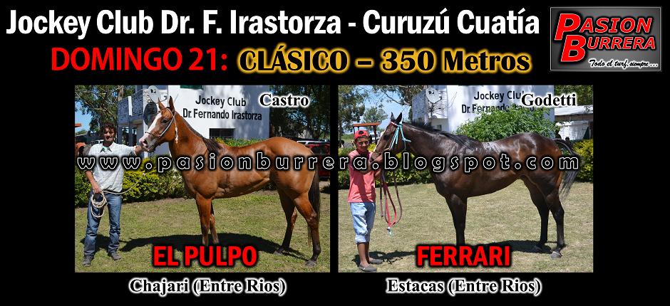 CURUZU - 350 - MAM