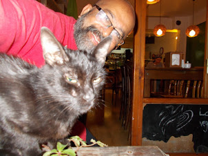 Tuesday(15-9-2015):-Selfie with famous street cats of  Istanbul.